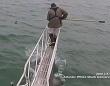 足元から思いっきりガブリンチョ!ニンゲンを狙ってジャンプするホホジロザメの恐怖