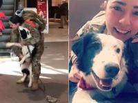 あれから1年後・・・女性兵士が帰国してすぐ空港で、愛犬との感動の再会(アメリカ)