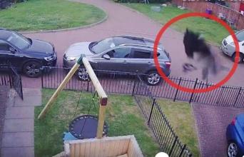 監視カメラが2回とらえた、庭をうごめく黒い影。恐怖に怯える住人は司祭に祝福を頼む
