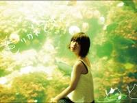 ※イメージ画像:森川葵オフィシャルブログ『もりかわです』より