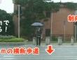 中国に存在する渡らせる気がまったくない横断歩道。ただし100メートルを5秒で走れれば可能。