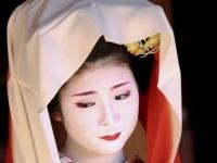 京都フラワーツーリズムのプレスリリース画像