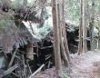 サイレンの舞台、埼玉県は山掴集落に潜入(写真/村田らむ)