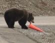 クマ1がコーンを倒して行った「まったくもう、散らかしたままじゃダメでしょ!」とクマ2が元に戻して行った