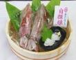 白輝姫(鳥取県水産課提供)