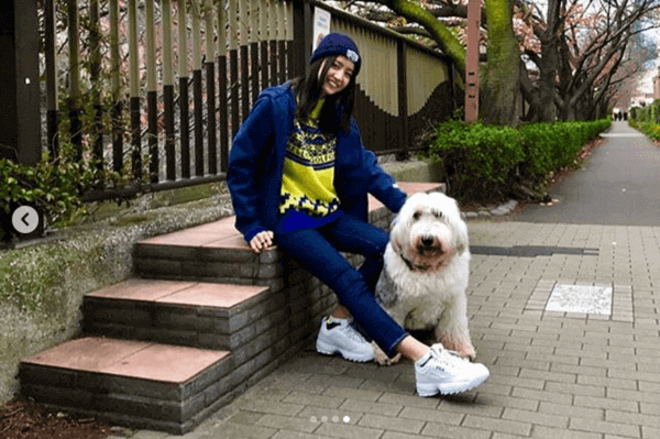 犬 の散歩 工藤静香