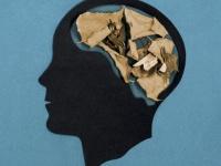 脳の過剰な活動を抑えることで老化を遅らせることができる(米研究)