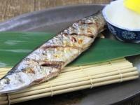 秋刀魚以外にも! 秋に食べたい旬の魚介類ランキング