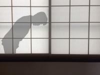 V6三宅健、「悲しい結果、残念な結果」アイサツできないジャニーズJr.を暴露(写真はイメージです)
