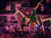 巨大蜘蛛が蜘蛛の巣から降りてくる!アメリカのハロウィンは今年も健在だった