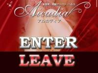今回摘発された受付型風俗店・アルカディアのホームページ。現在は閉鎖されている