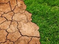 「地球温暖化にまつわる嘘」は嘘?よく出回っている気候変動にまつわる5つの噂を科学的に検証してみた
