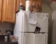 ここにつけたらあか~ん!冷蔵庫にマグネットで張り付けている紙のシートをことごとく落としていく猫