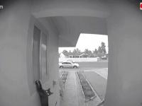 飼い猫の朝帰りをスクープ!「入れてほしいニャ!」とねだる猫を玄関の監視カメラがとらえていた