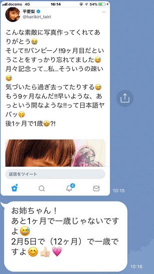 ツイッター:平愛梨(@harikiri_tairi)より