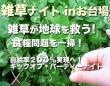 雑草ナイト in お台場