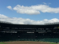 大空が広がる甲子園球場。事件はこの舞台で起こった!