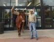 「すべての動物を歓迎します!」を掲げるペットショップに巨大なオス牛を連れて行った。その反応は?(アメリカ)