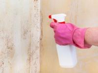 「カビ取り剤」の危険度を徹底検証(depositphotos.com)