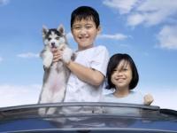 東日本大震災以降、動物愛護や飼い主の心のケアなどの観点から、災害時におけるペットの「同行避難」が推奨されることになった(depositphotos.com)