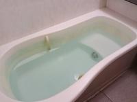 夏の入浴は湯船につかる? シャワーだけ? 大学生の約6割は……