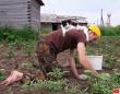 それでは応援しよう。草むしりする男性の背中に鎮座し癒し続ける風な猫