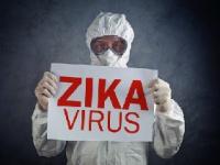 アメリカで拡大するジカ熱感染 shutterstock.com