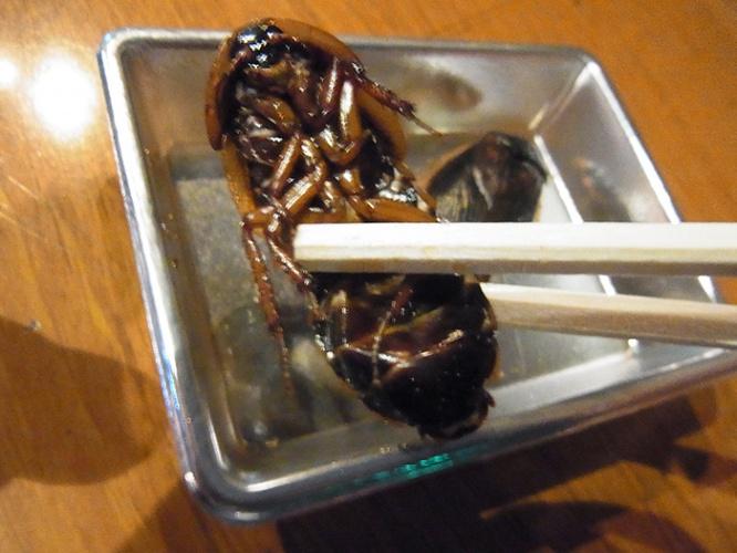 ソフトクリーム 虫