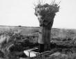 第一次大戦時にヨーロッパ各国軍がこぞって使用していた木に偽装した監視塔