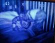 赤子ホラー。監視カメラがとらえた不気味な赤子たちの画像