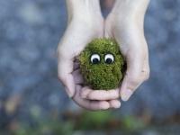 おもちゃの目玉をつけるだけで人はやさしくなる。募金箱に目玉をつけただけで寄付率が48%増加(英研究)