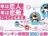 ペンギンたちのムフフな恋愛事情が分かる、「ペンギン相関図2020」が公開中!(京都水族館・東京すみだ水族館)
