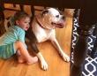 雷雨の中、「雷なんか怖くないよ!大丈夫だよ!」と犬を安心させる男の子