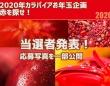2020年カラパイアお年玉企画「赤を探せ」当選者発表!応募写真一部公開中