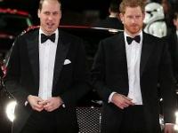 ウィリアム王子、ヘンリー王子
