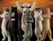 鎮まれ…俺の右手…!中二病を発症した猫のフィギュアがカプセルトイに登場「厨二猫(ちゅうにびょう)」