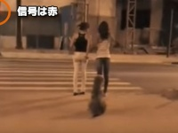横断歩道の前に2人の女性と1匹の犬がいた。驚きの展開はこの後すぐ!