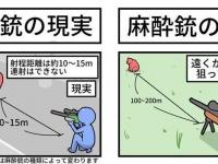 射程距離は...(画像はねんまつたろう@KITASAN1231さんより提供)