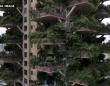 「都会のオアシス」をテーマに建設されたマンション、蚊の襲来で住民が相次いで退去。終末的光景に(中国)
