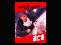 1993年に映画化もされた『逃亡者』の真実は?(画像はAmazonビデオより)