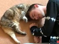 猫と飼い主のラブラブな関係に癒されたい!「ノーキャットノーライフ」を地で行く日常的風景の一コマたち