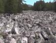 知られざる自然の驚異。水の代わりに大量の岩石で埋め尽くされたロシアにある「石の大河」
