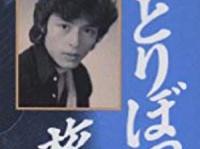 『ひとりぼっちの旅立ち―元ジャニーズ・アイドル 豊川誕半生記』(鹿砦社)