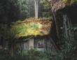 まるで昔話の世界... 白川郷の片隅で、緑に染まるかやぶき屋根が幻想的で美しい