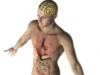 敏性腸症候群の症状が続くと様々な不定愁訴が現れる shutterstock.com