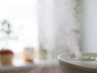 加湿器の水に混ぜた殺菌剤で死者100人に(shutterstock.com)