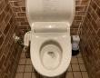 男女共用トイレ(画像は編集部編)