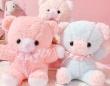 fluffy bunnyのプレスリリース画像