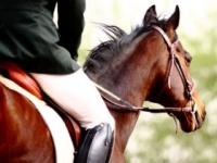 リハビリが原点の障害者スポーツ「乗馬」(shutterstock.com)