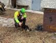 登山で滑落したまま7日間遭難していた男性、寄り添い続けてくれた愛犬が心の支えとなり無事生還(イタリア)